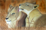 Lionesses in Pastel by Christine Boyce